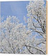Winter Landscape Wood Print