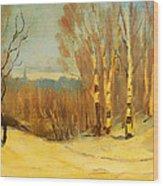 Winter Near Montreal Wood Print
