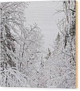 Winter Road Wood Print by Cheryl Baxter
