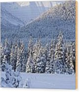 Winter Scenic Of Snowcovered Spruce Wood Print