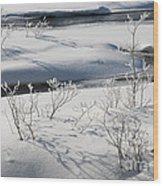 Winter Stream, Jasper National Park Wood Print