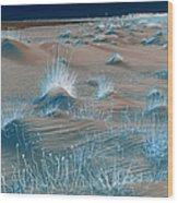 Winters Dunes IIa Wood Print