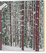 Winters Forest Wood Print