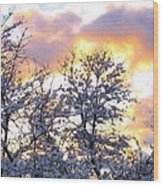 Wintry Sunset Wood Print by Will Borden