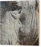 Wise One,elephant  Wood Print