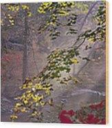Wissahickon Autumn Wood Print by Bill Cannon