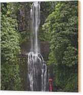 Woman With Umbrella At Wailua Falls Wood Print