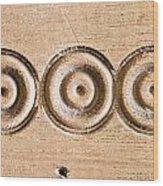Wood Carving Wood Print by Tom Gowanlock
