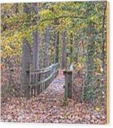 Wye Island Trail  Wood Print