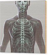 X-ray Skeleton Wood Print