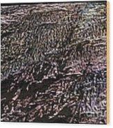 Xanada - Mars  Wood Print