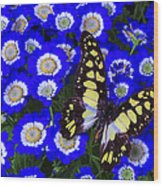 Yellow And Black Butterfly Wood Print