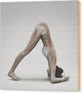 Yoga Dolphin Pose Wood Print