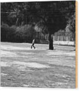 Young Boys Playing Cricket In A Park Near Delhi Zoo Wood Print