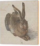 Young Hare Wood Print