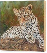 Young Leopard Wood Print