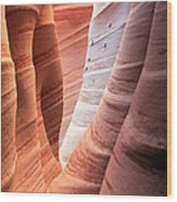 Zebra Canyon  Wood Print