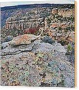 Colorado National Monument Wood Print