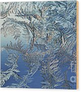 Frost On A Windowpane Wood Print by Thomas R Fletcher