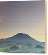 Indonesia, Bali, Rice Fields And Wood Print