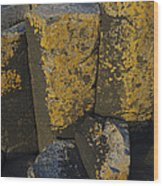 The Giants Causeway Wood Print
