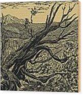 1000 Years Wood Print by Maria Arango Diener