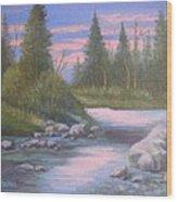 100112 1114 Shadow's Eve Wood Print