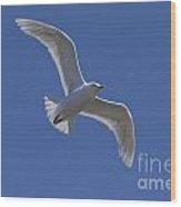 101130p135 Wood Print