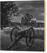 101314-146-op Wood Print