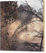 102201-39 Wood Print