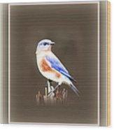 104101-024 Wood Print