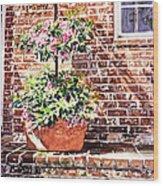 1067 Azalea Way Wood Print