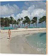 Beach At Coco Cay Wood Print