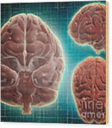 Conceptual Image Of Human Brain Wood Print