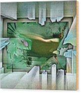 #11 Elusivenudescape 2003 Wood Print