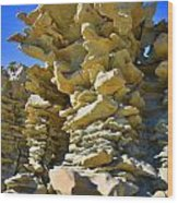 Fantasy Canyon Wood Print