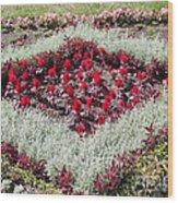 Flowerbed Wood Print
