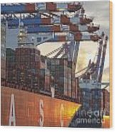Hamburg Harbor Container Terminal Wood Print
