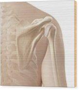 Human Shoulder Wood Print