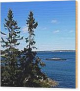 Maine Seascapes Wood Print
