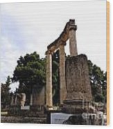 Olympia Greece Wood Print