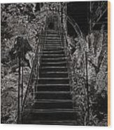 Staircase Leading To A Higher Level In Siloso Hotel In Sentosa Wood Print