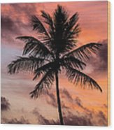 Sunset And Palm Tree Wood Print