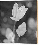 Garden Flora Wood Print