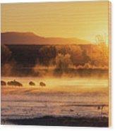 Usa, New Mexico, Bosque Del Apache Wood Print