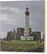 110202p140 Wood Print