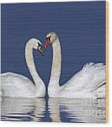 110307p053 Wood Print