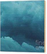 11032013009 Wood Print