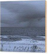 11032013011 Wood Print