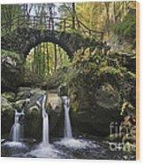 110414p154 Wood Print